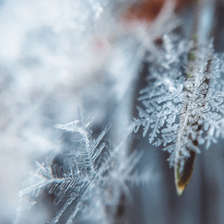 WEATHER: Forecasting Snow On The Tip Of A Pin