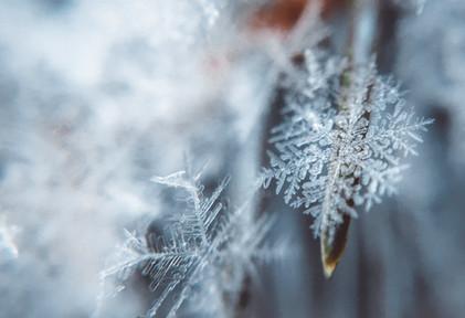 #18 Advent: Kraftvolle Winterwanderung