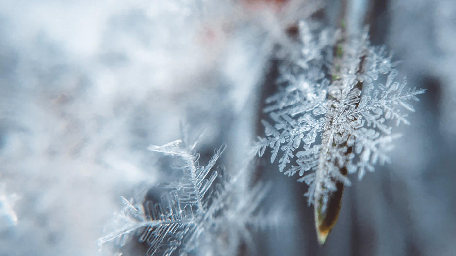5 tips to conquer winter
