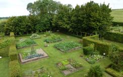 Jardin de carrés contenant des plantes aromatiques, médicinales et condimentaires