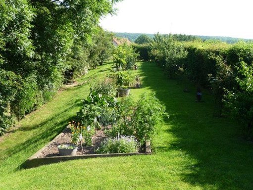 Le jardin d'Hildegarde