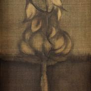 뿌리박다 Be deeply rooted