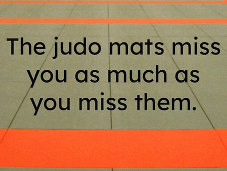 Online Judo lessons
