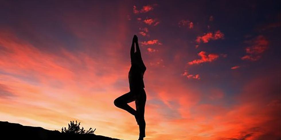 Ayur-Yoga: Build your own yoga practice