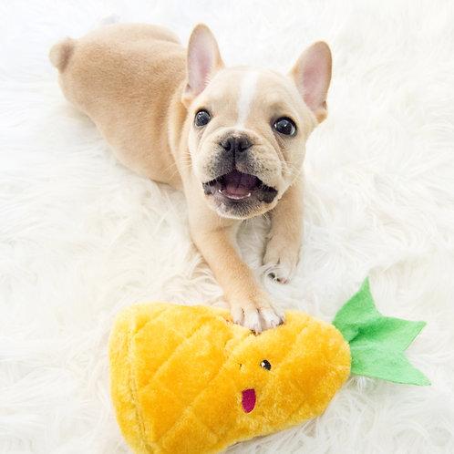 Pineapple Dog Toy