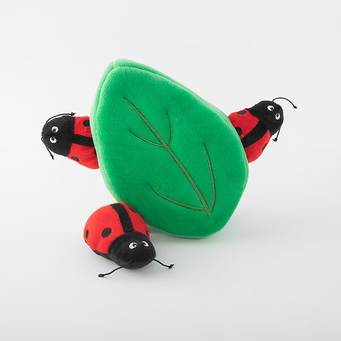 Ladybugs in Leaf