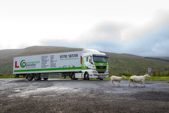 lgv with sheep
