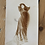 Thumbnail: Art Nouveau Postcard 1908