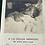 Thumbnail: Post Mortem Memorial Card