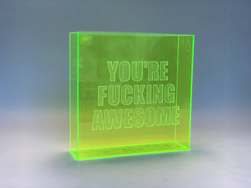 You're Fucking Awesome Plexiglass Art