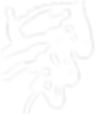 RCC INC logo.png