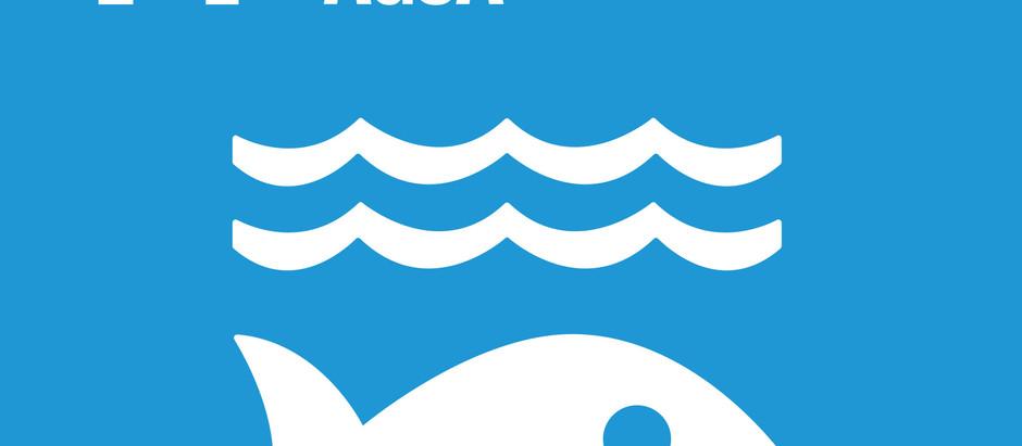 ODS e Pesca | Vida na Água