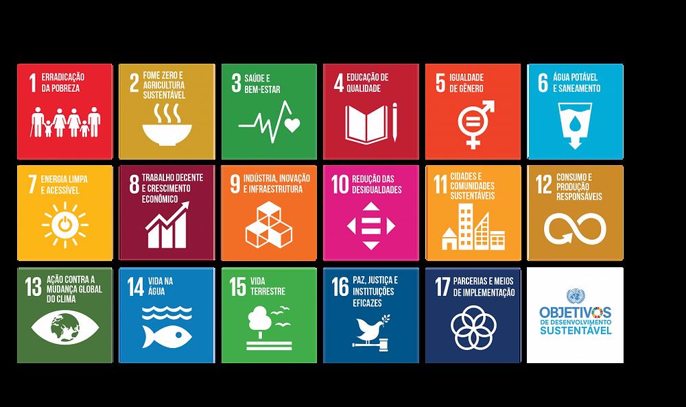17 objetivos de desenvolvimento sustentável