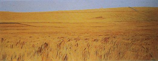 Archivio Piero Guccione_Campo-di-grano-I-1974-83-ost-68x171-cm.j