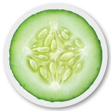 140 Cucumber sticker (klistermärke till Freestyle Libre sensor)