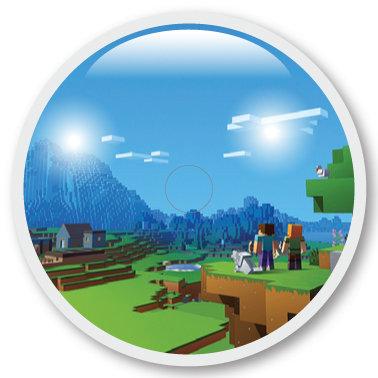 209 Minecraft view