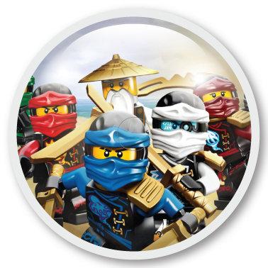239 Ninjago rules