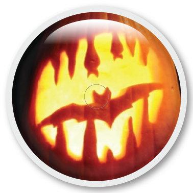 225 Pumpkin bat