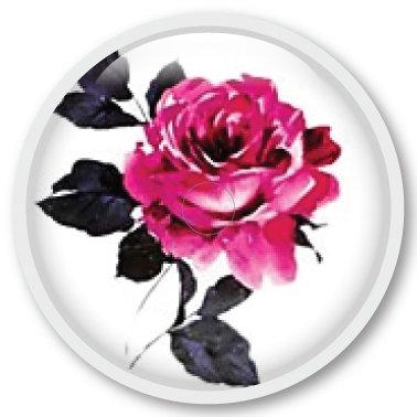 233 Rose