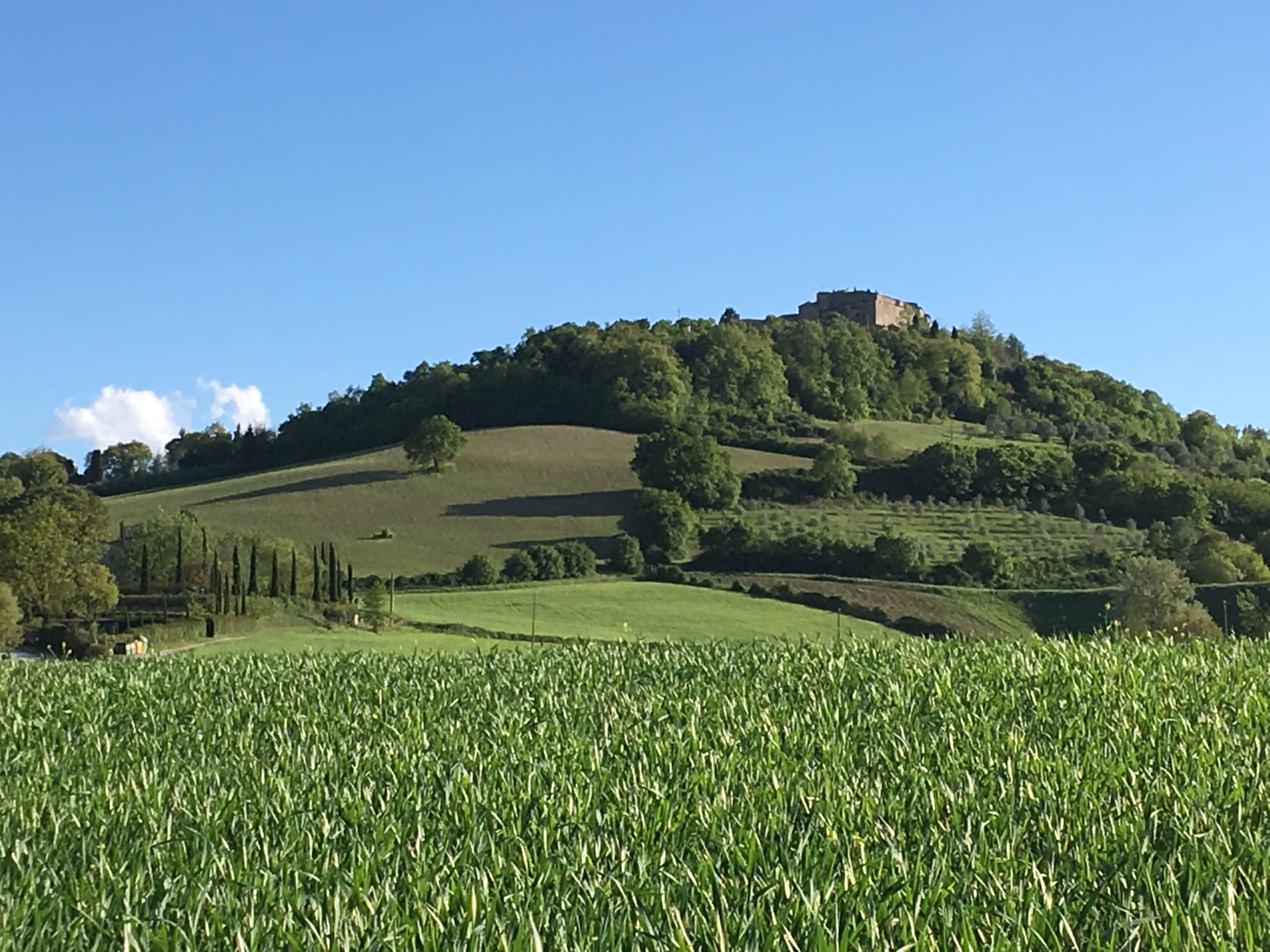 Paysage Toscan