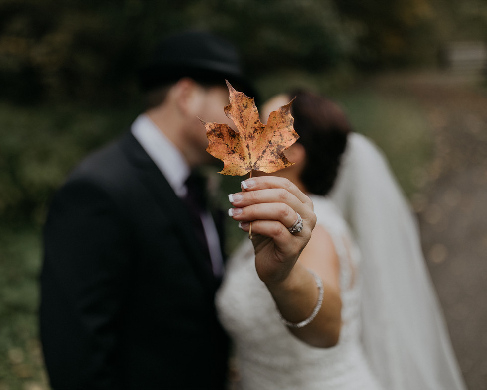 wedding couple kissing in nature