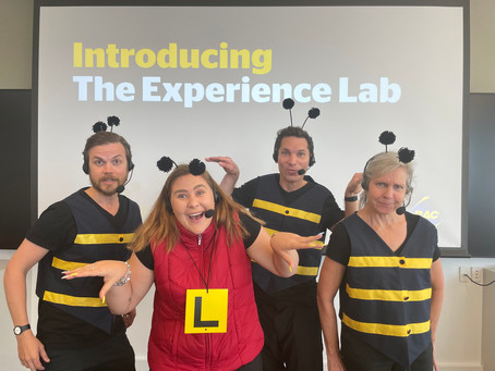 The Experience Lab - Review of 2020