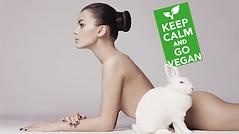 vegane-gele_5e13b299f8.png