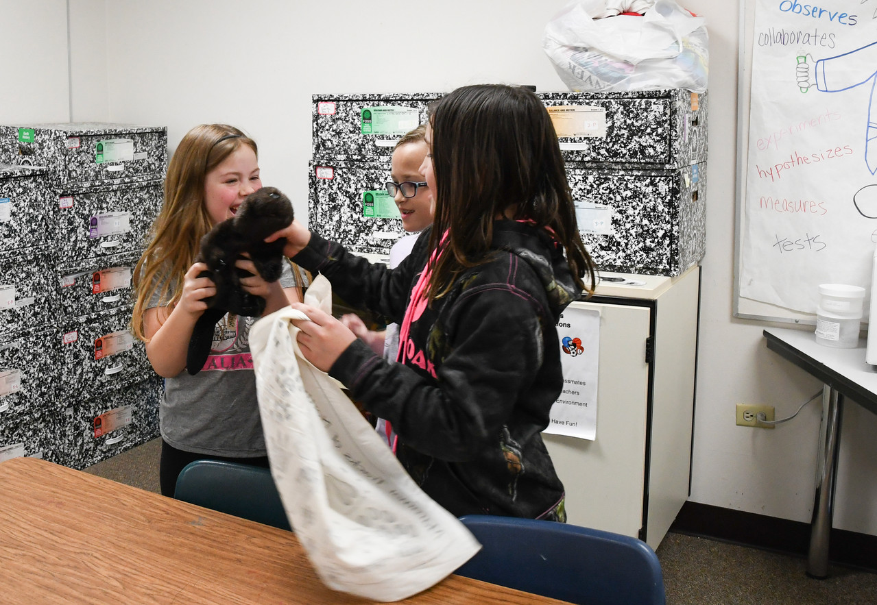 Acres Green In-Class Fur Trapping 2-2018-6