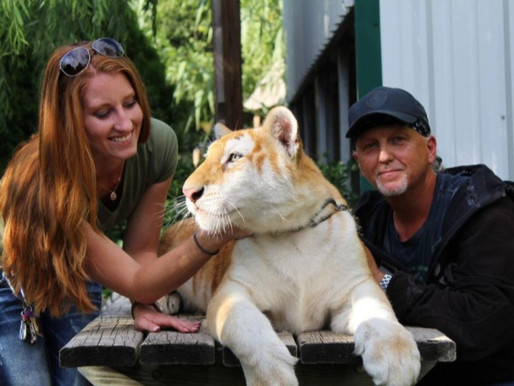 DOJ seeks $40K from Tiger King Park owners Jeff and Lauren Lowe