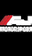 AJ MotorSport.png