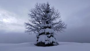 Durmitor National Park - Zabljak