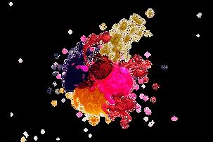 pexels-free-creative-stuff-1193743%20(1)