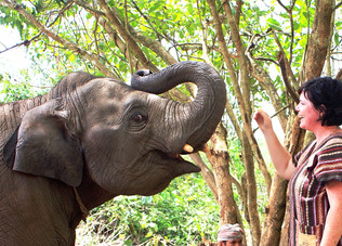 Love Elephants? Spend A Day With Them In Northern Thailand!