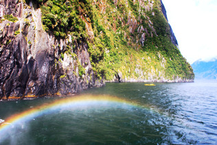 Milford Sound: The 8th Wonder Of The World On A Budget