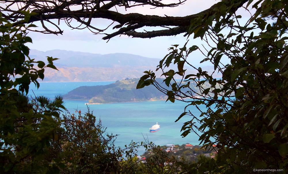 Mount Kaukau view