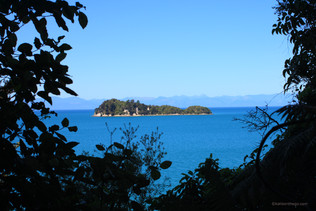 A Day in Kaiteriteri on the Cheap