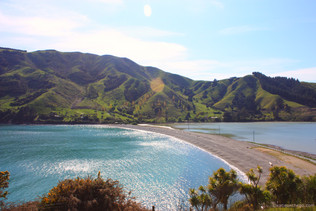 Exploring New Zealand's Cozy Artist Towns: Cable Bay and Nelson