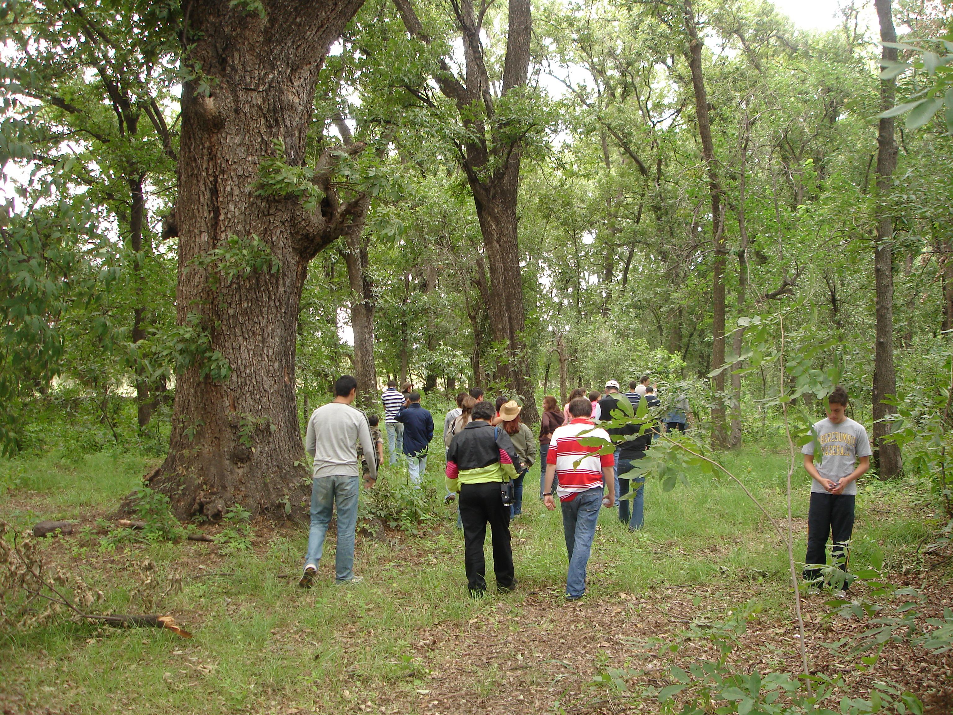 Camp familiar GDL, MX rojo 022
