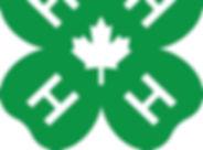 4H-Canada_4c-2.jpg