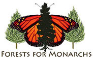 Forests for Monarch