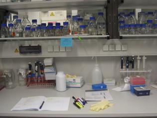 Ben şimdiki kafamla Boğaziçi Üniversitesi Moleküler Biyoloji ve Genetik Bölümüne girmiş olsa idim ne