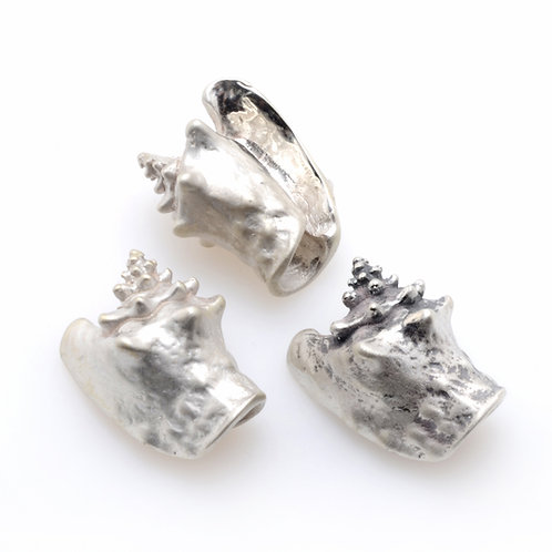 Silver Charm | Conch Shell
