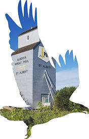 eagle sillouette St. Albert.jpg