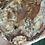 Thumbnail: Petrified Wood Slab