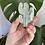 Thumbnail: Prehnite with Epidote Cactus