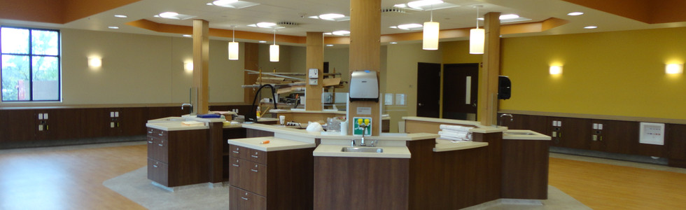 Kidney dialysis treatment room sinks and emergency eyewash