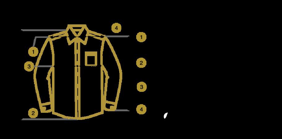 image-vectorielle-chemise-mesures-buttic