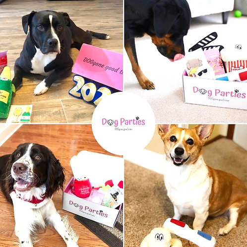 Dog Parties Box Subscription