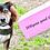Thumbnail: Dog Parties Box Subscription