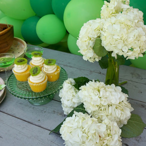 """Keeping it Kiwi"" Party Inspiration"